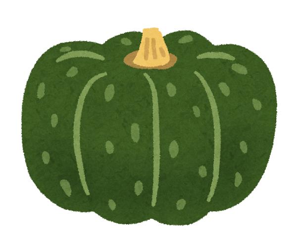 Vegetable_kabocha